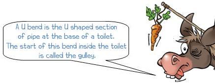 A U bend is the U shaped section of pipe  at the base of a toilet.  The start of this bend inside the toilet  is called the gulley.