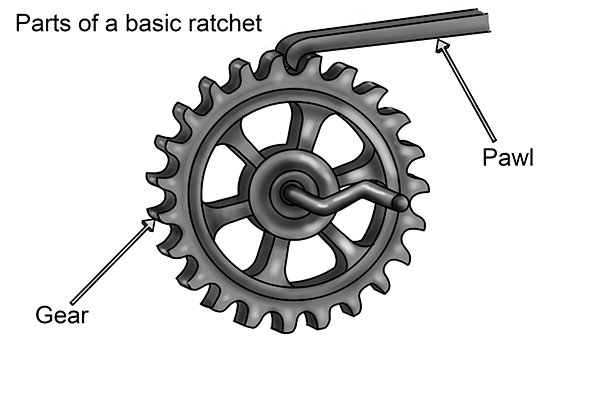 There are two basic parts to a ratchet mechanism the gear and the pawl. When engaged the pawl locks into the gear teeth only allowing the gear to turn in one direction.