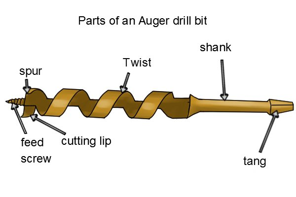 The parts of an auger can look a bit different to other drill bits. They have a screw feed tip, spur, cutting lip, spiral twists and a shank with either a hexagonal or square tang end
