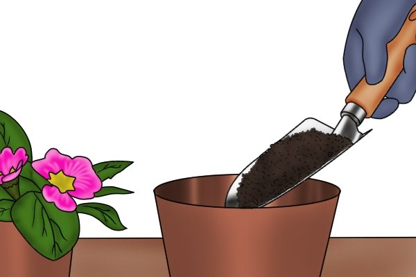 Potting plants with a garden trowel