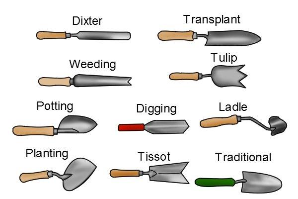 Types of garden trowel: traditional, transplanting, dixter, ladle, potting, digging, tulip, weeding, tissot, planting