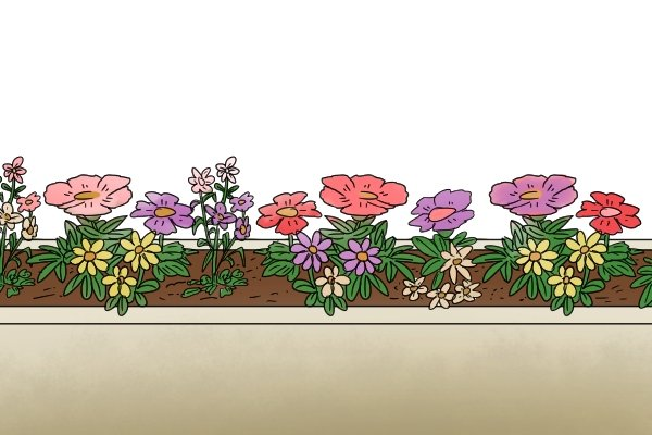 narrow flowerbed