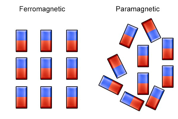Ferromagnetic and paramagnetic electrons