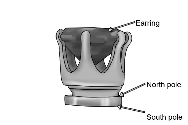 Magnetic earrings with labelled north and south poles