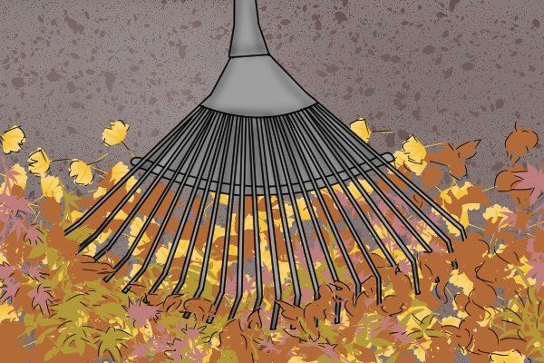 Remove any fallen leaves or weeds with a fork and loosen heavy soil with a pick.