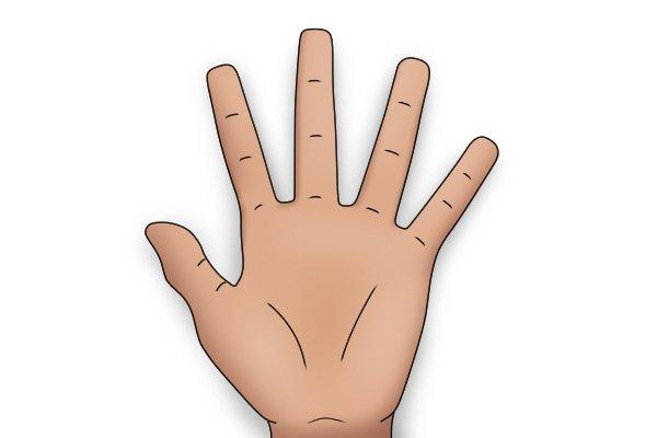 Hand, hand span, grip size, waving hand