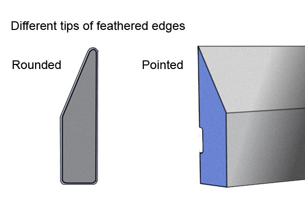 pointed and rounded tips on feather edges