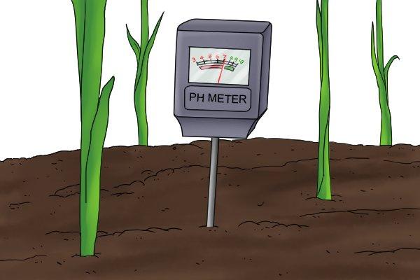 soil pH meter in use