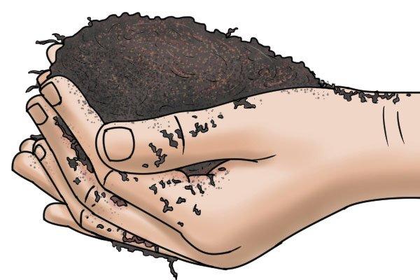 soil in hands, checking soil pH