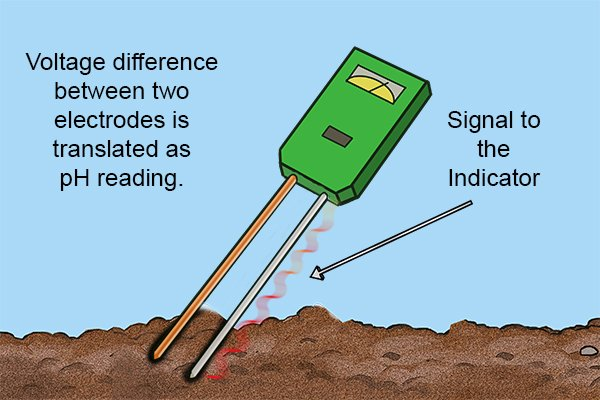 How Does A Soil Ph Meter Work