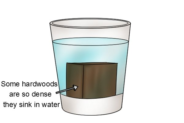 Lignum vitae sinks in water, hardwood, timber, dense wood