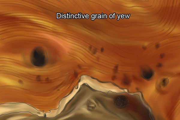 The distinctive grain of yew, wood, softwood, timber