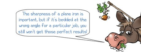 Wonkee Donkee on making sure you've got the right pitch for you plane