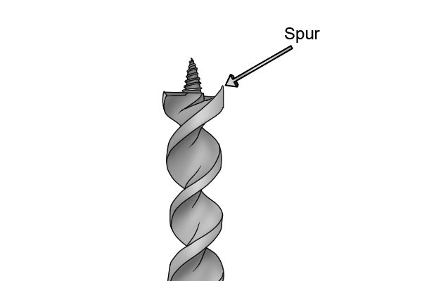 Auger bit tip with the location of the spur labelled
