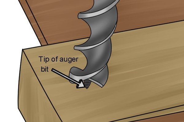 Image showing an auger bit guide screw engaging with a plank of wood