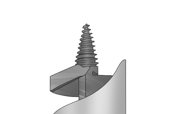 A guide screw on an auger bit