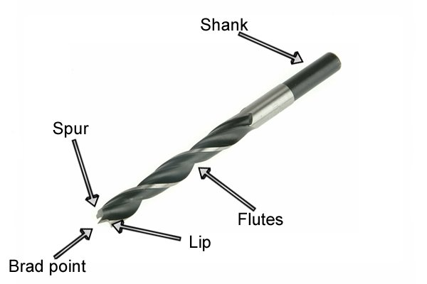 Labelled diagram of a brad point bit indicating the different parts by name