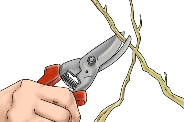 Utility snip cutting twig
