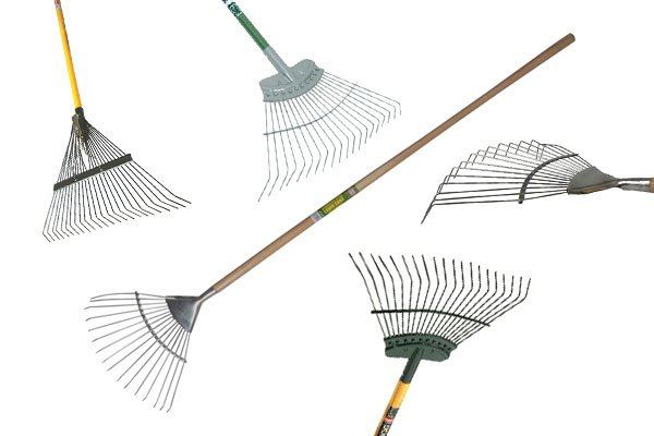 Lawn rakes are sometimes called leaf rakes. they're used for raking leaves and other jobs