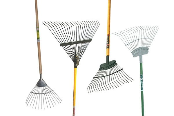 Rakes come in different designs, lawn rakes and leaf rakes can gather leaves