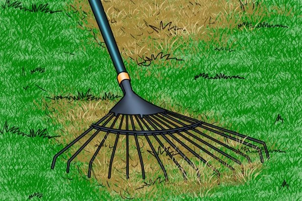 Lawn rakes have thin metal tines which can be used to scratch up unwanted materials from paths and lawns