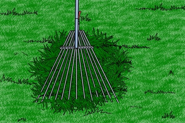 You can gather grass clippings with a lawn rake