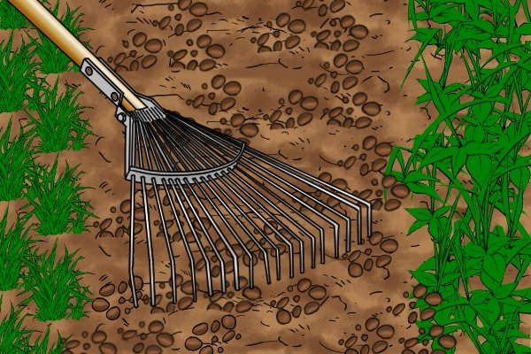 Lawn rakes with strong enough tines can be used to disturb soil and remove dead roots