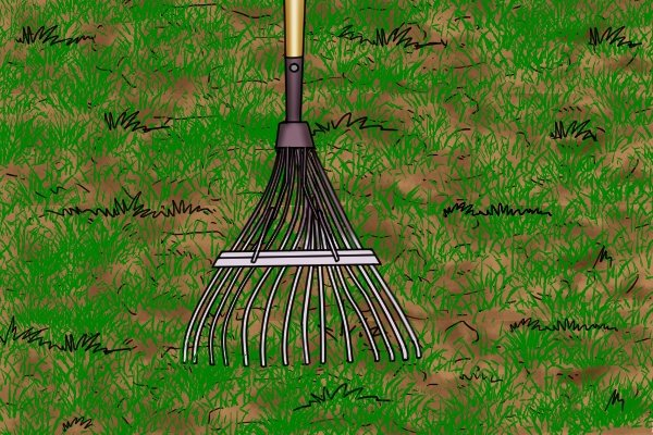 Lawn rakes can spread and level topsoil on lawns or fertiliser