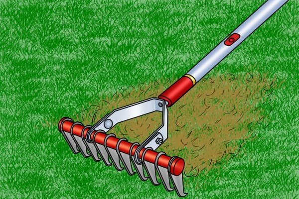 Thatching rakes have sharp teeth which are used to cut through plant materials