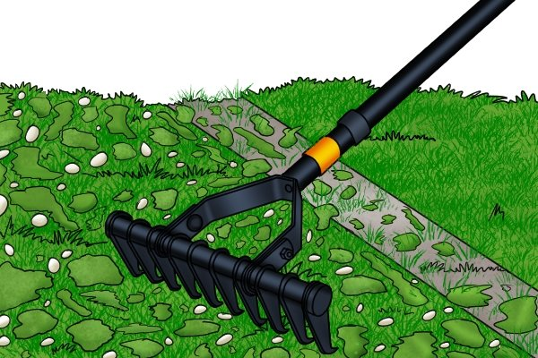 Moss can be raked out of lawns with thatch rakes