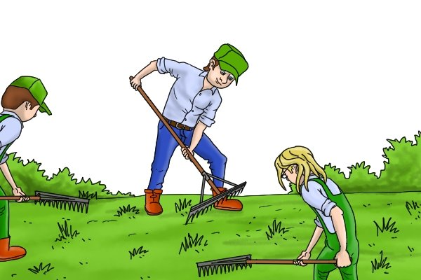 You can get mechanical landscape rakes as well as hand-held landscape rakes, landscape rakes can be used on large areas
