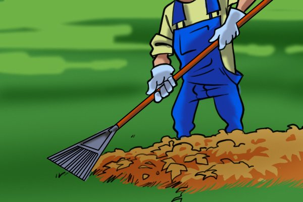Some people prefer to turn dead leaves to mulch rather than rake them up. Leaf and lawn rakes are designed to rake leaves.