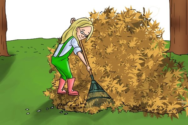 Making one large pile of raked leaves may not be practical, making smaller piles you can move to a large pile might be more efficient!