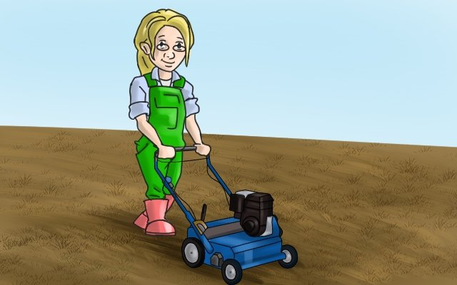To remove thatch you can use a lawn rake or a thatching rake. You can also use power rakers