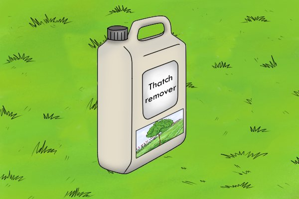 You can rake up thatch from lawns or use a thatch removing liquid