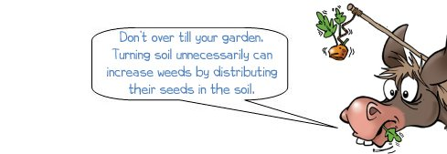 "Wonkee Donkee says ""Don't over till your garden. Turning soil unnecessarily can increase weeds by distributing their seeds in the soil"""