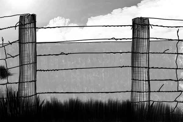Barbed wire was invented and caused wire cutters to become in increasing demand.