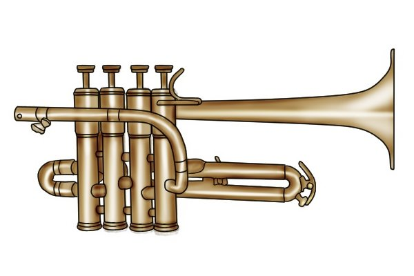 Trumpets have valves that are cleaned with valve pipe cleaning brushes (AKA interior, tube, bottle brush)