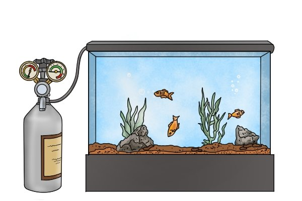 Aquarium with carbon dioxide cylinder and regulator