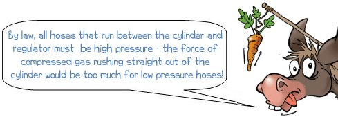 Wonkee Donkee says you must use high pressure hose between regulator and cylinder