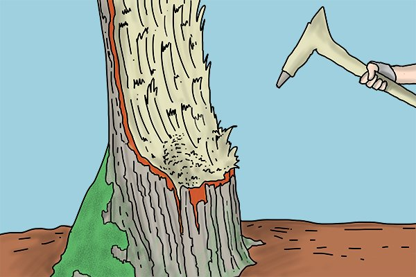 Image of a DIYer chopping away at a tree with their adze, determined to make the half way point