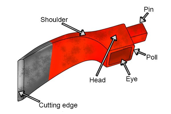 Image showing the locations of the different parts of an adze head