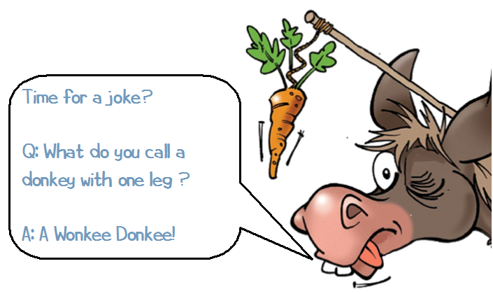 Time for a joke? Q: What do you call a donkey with one leg? A: A Wonkee Donkee!