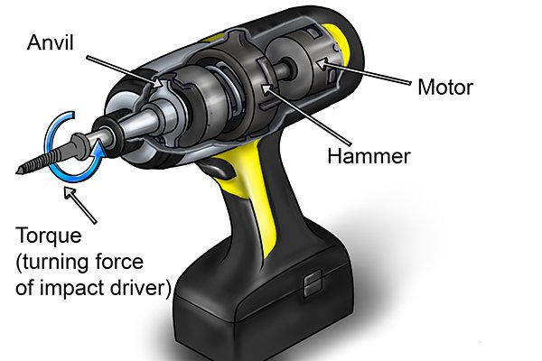 Motor, hammer, anvil, torque (turning force of impact driver)