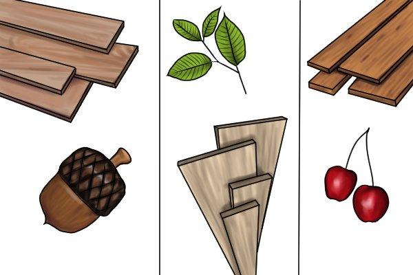 Image to show the most dense species of wood that are commonly used in dowelling which are oak beech and cherry