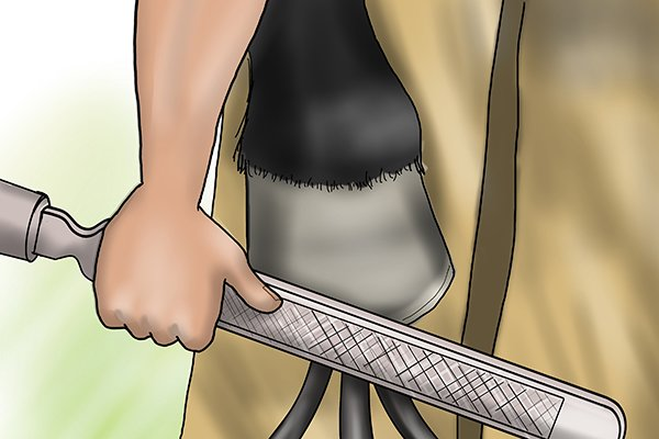Image of a horse keeper filing the outside of their horse's hoof with a horse rasp