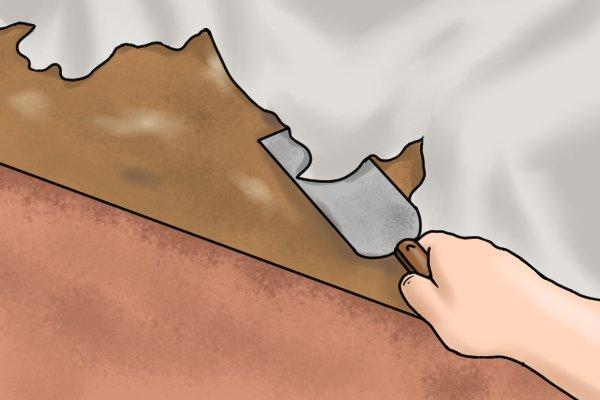 removing lino 5