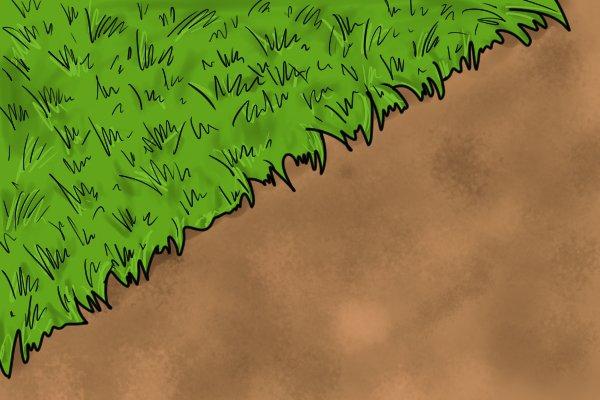 edging lawn