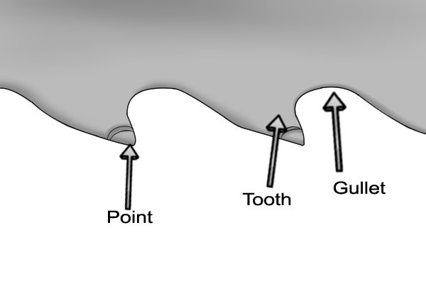What are the different parts of a saw's teeth: gullet, point and tooth