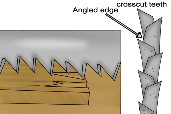 Crosscut teeth are angled on their inside edge.